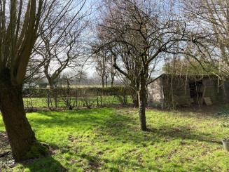 Tuin naar veld -- feb-2021.jpg